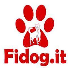 FIDOG.IT – Addestramento Cinofilo – Educazione ed addestramento del cane – Pensione e dog sitting
