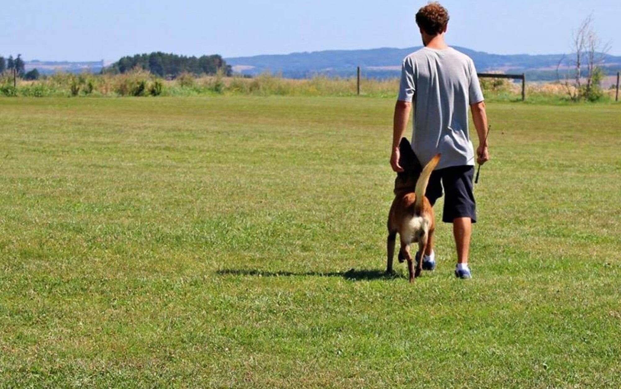 FIDOG.IT - Addestramento Cinofilo - Educazione ed addestramento del cane - Dog sitting